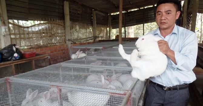 Dũng cảm để thay đổi – anh kỹ sư trở thành ông chủ trang trại nuôi thỏ lai