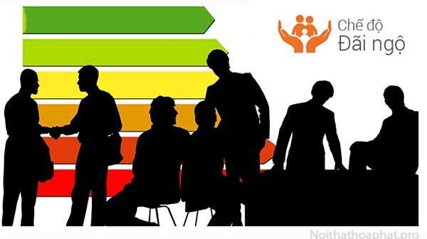Bí quyết đãi ngộ nhân sự giúp thu hút và giữ chân người tài