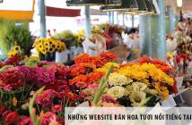 Những website bán hoa tươi nổi tiếng nhất tại Việt Nam
